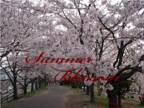 Poster - Summer Blossom FF